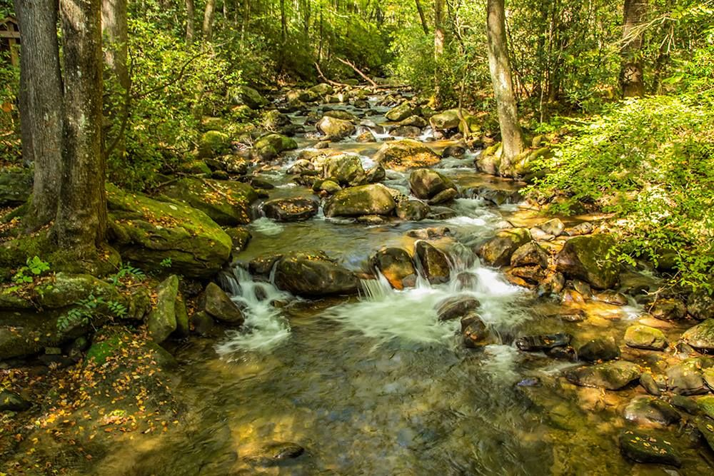 Middle Saluda River 01 by Jim Dollar Photography