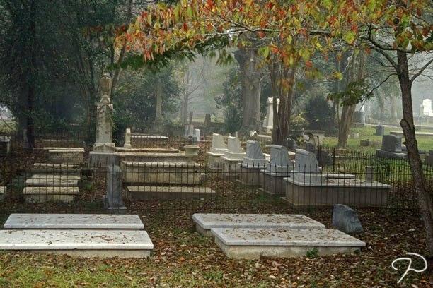 Louisiana City Cemetery Scene