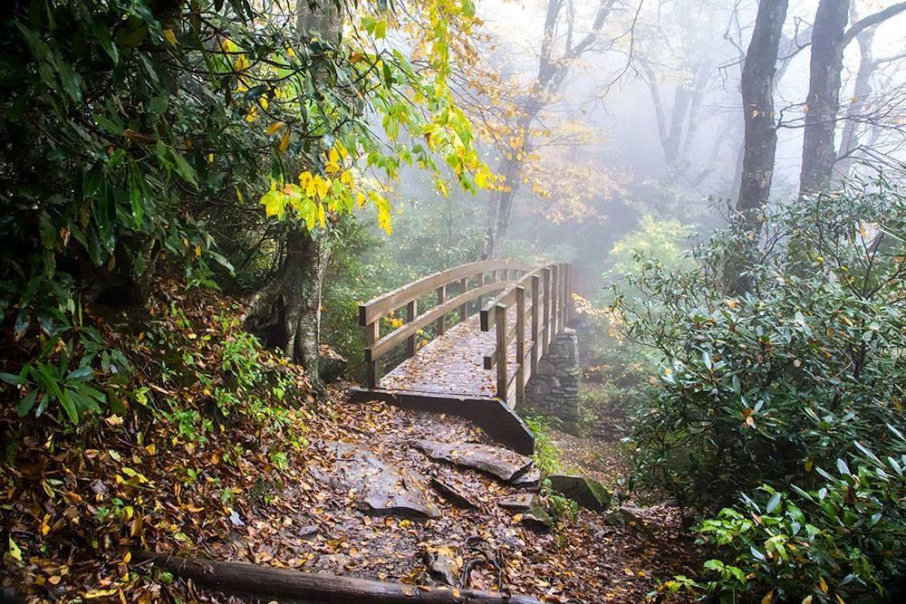 Bridge to Rough Ridge 03-Blue Ridge Parkway near Linville Falls October 12, 2014